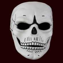 Spectre like Adult High Quality Resin full face Mask